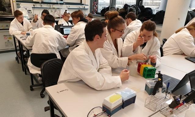 """Praktikumstag im """"teutolab Biotechnologie"""" – Biotechnologen für einen Tag"""